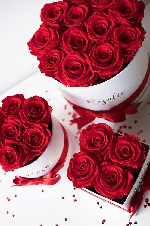 Roses Box con rose stabilizzate (€58/220)