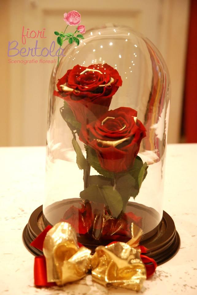 rosa incantata personalizzata