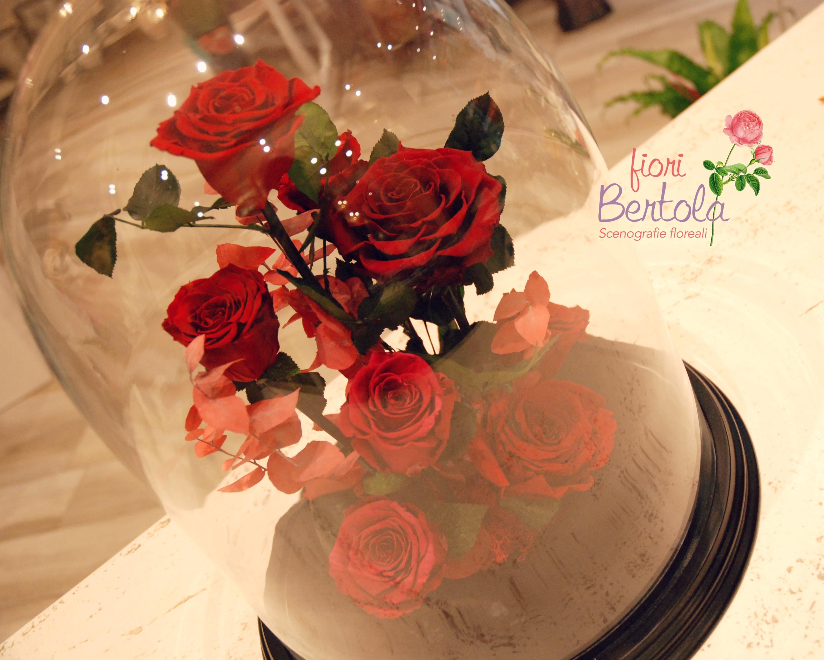 Rose rosse San Valentino