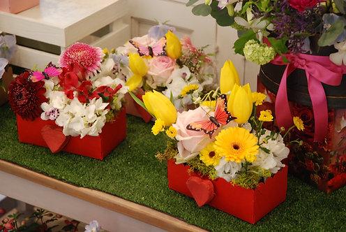 Cofanetti di fiori (€25/48)