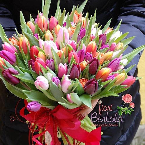 I love Tulip  (€25/120)