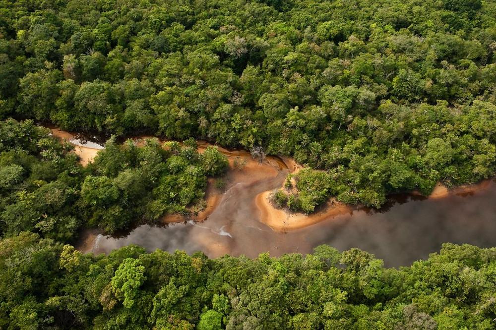Essequibo River, Guyana. (© Pete Oxford/iLCP)