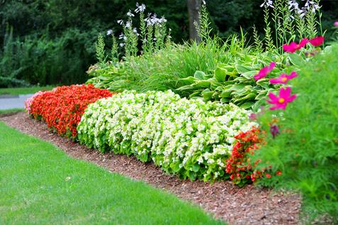 Indresano Landscaping Garden