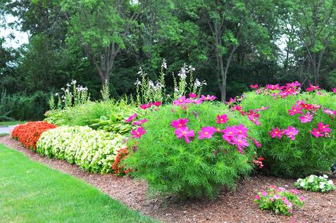 Indresano Landscaping garden bed