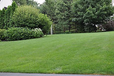 indresano landscaping lawn fertilization