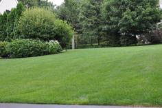 Indresano Landscaping Lawn Fertilization