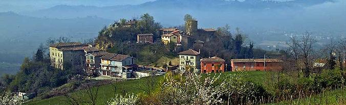 oliveto (1).jpg