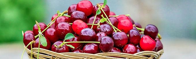 cherry-2554364_960_720.jpg