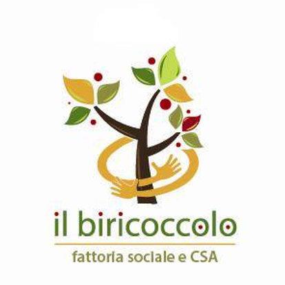 Biricocolo