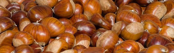 chestnuts-3727959_960_720.jpg