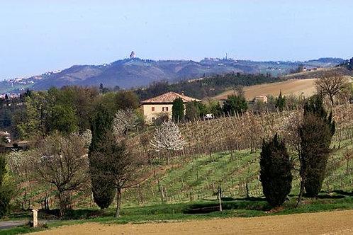 Agriturismo Montevecchio Isolani