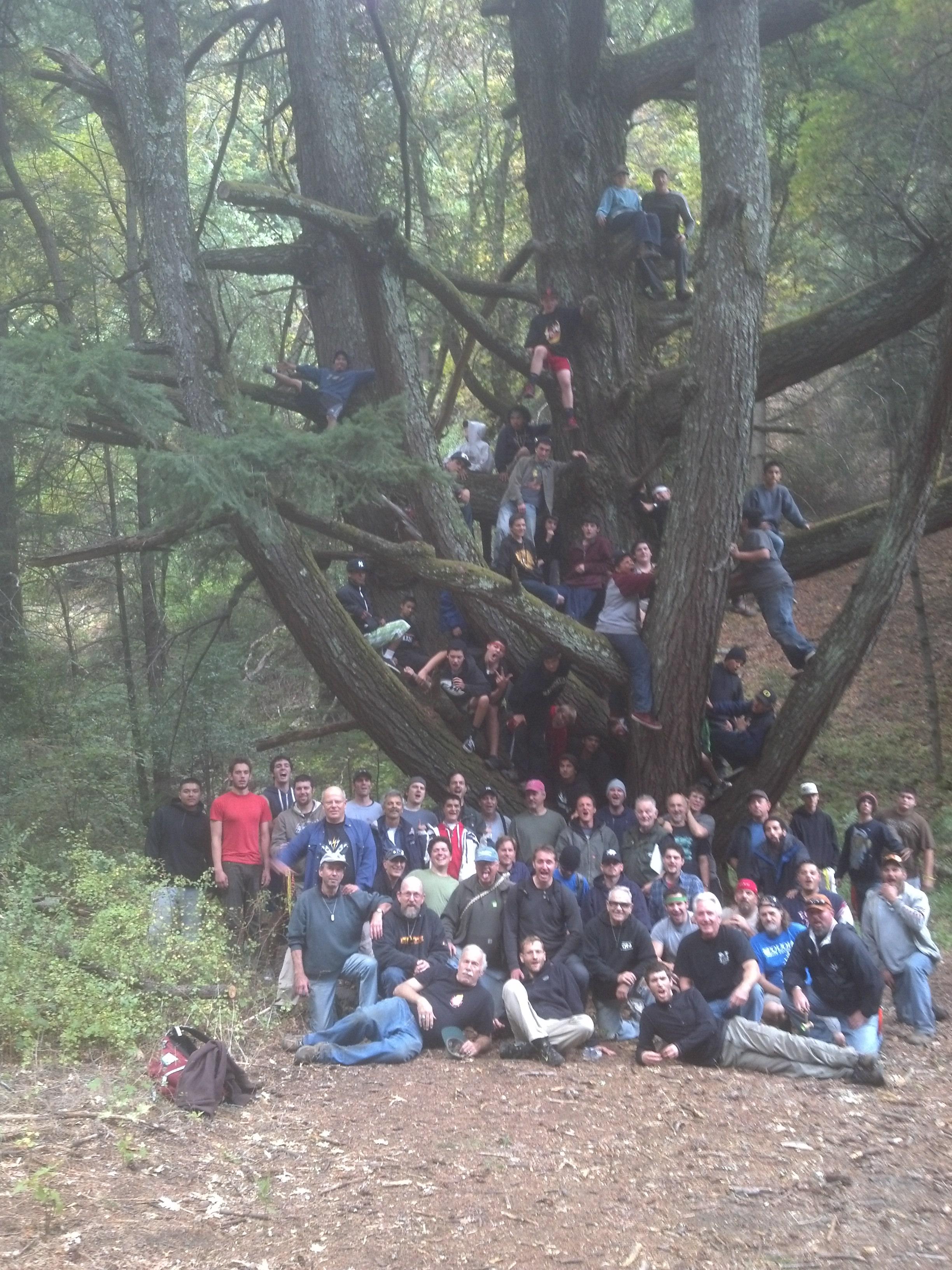 Volunteers & Young Men in Tree - 2013