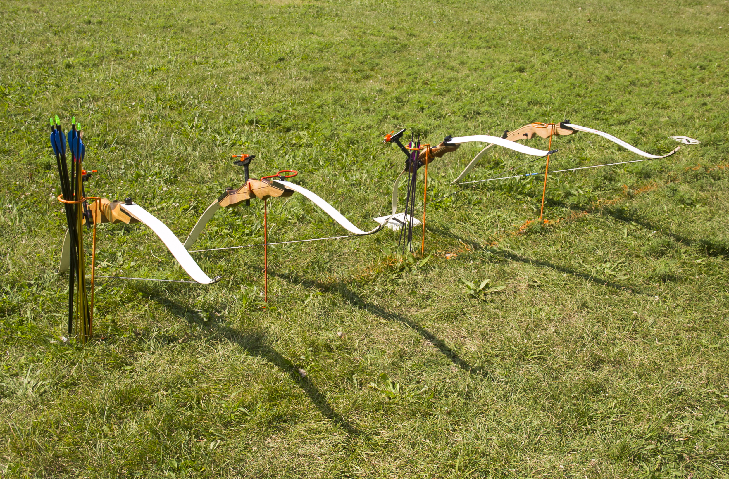 Beginner bows