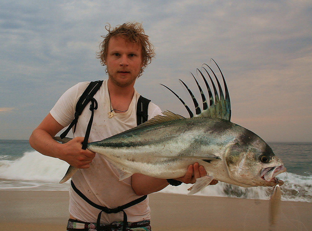 Finally, the roosterfish!