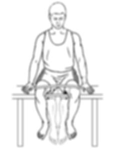 Hip Abductors.png