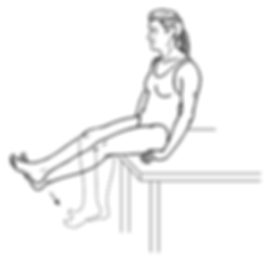 Knee Flexion and Extension.png