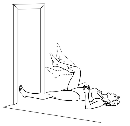 Gravity Knee Flexion.png