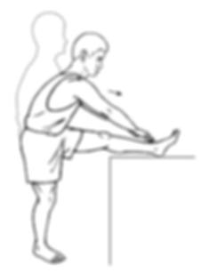 Hamstrings Ballet.png