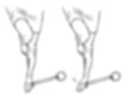 Ankle Inversion2.png