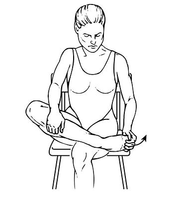 Ankle Plantar Flexion.png