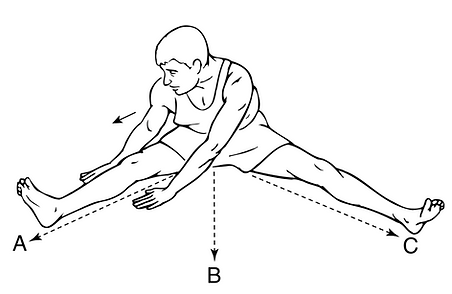Adductor Muscle Strain Exercise3.png
