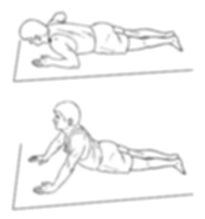 Lumbar Extension Prone to Press Up.png
