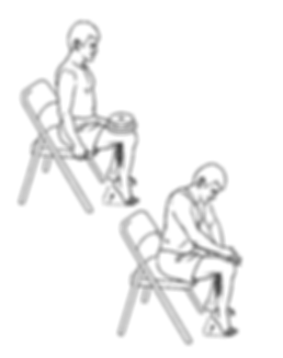 Seated Calf Raise.png