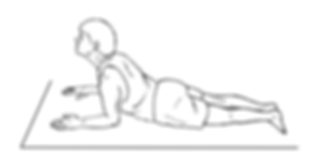 Lumbar Extension Prone on Elbows.png