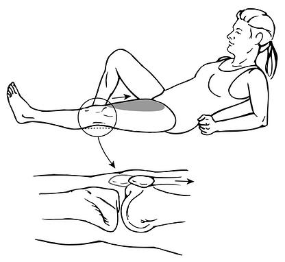 Quadriceps, Isometrics.png