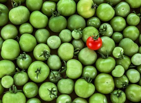 Proč nás upoutá červené rajče a ignorujeme všechna zelená?