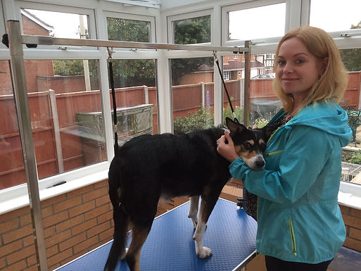 """Jen with her own best friend Beth, the Collie cross. Jen said: """"Beth isn't the best example of grroming as she's an old scruff... but she's my old scruff!"""""""