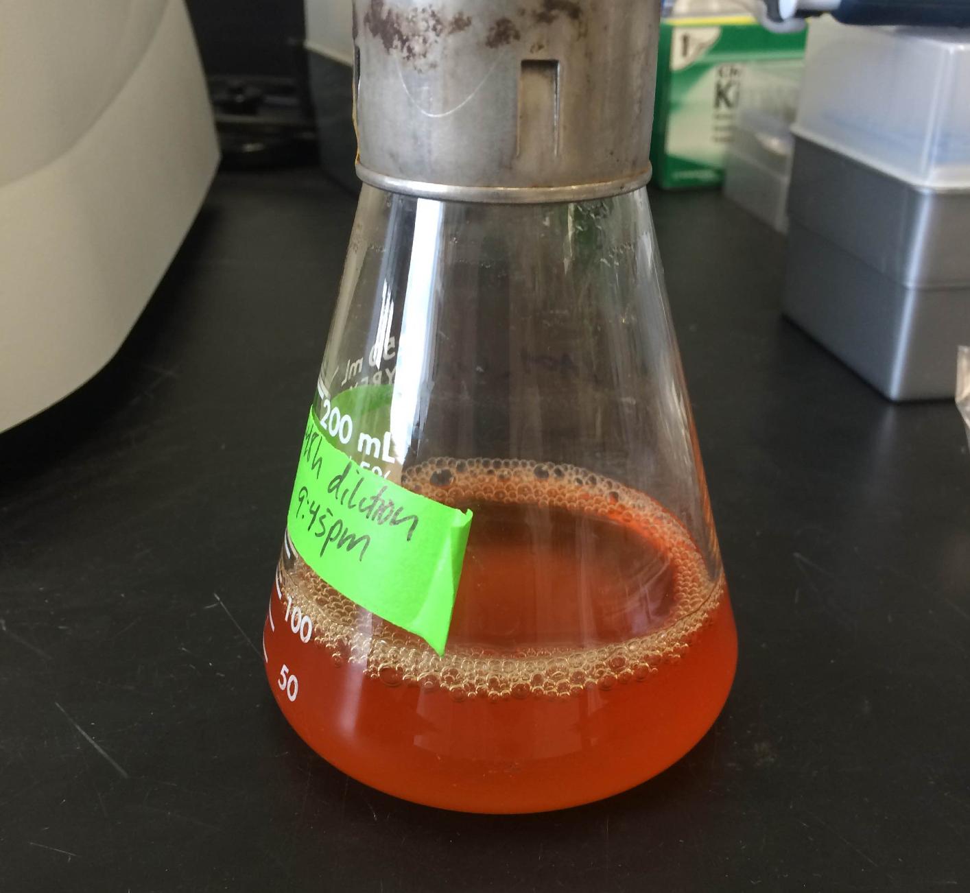 Charismatic methylobacterium!