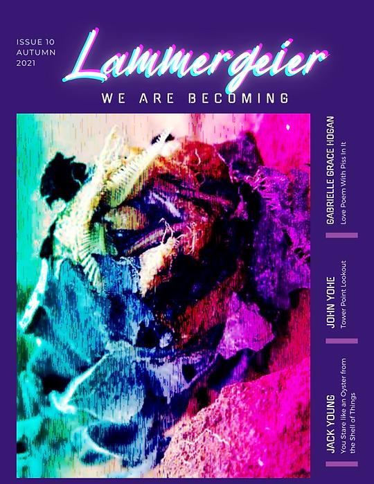 Lammergeier Issue 10.png