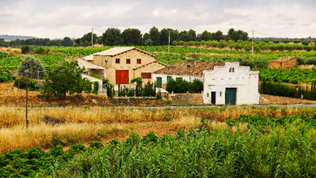 Weingut Vega Valterra.png