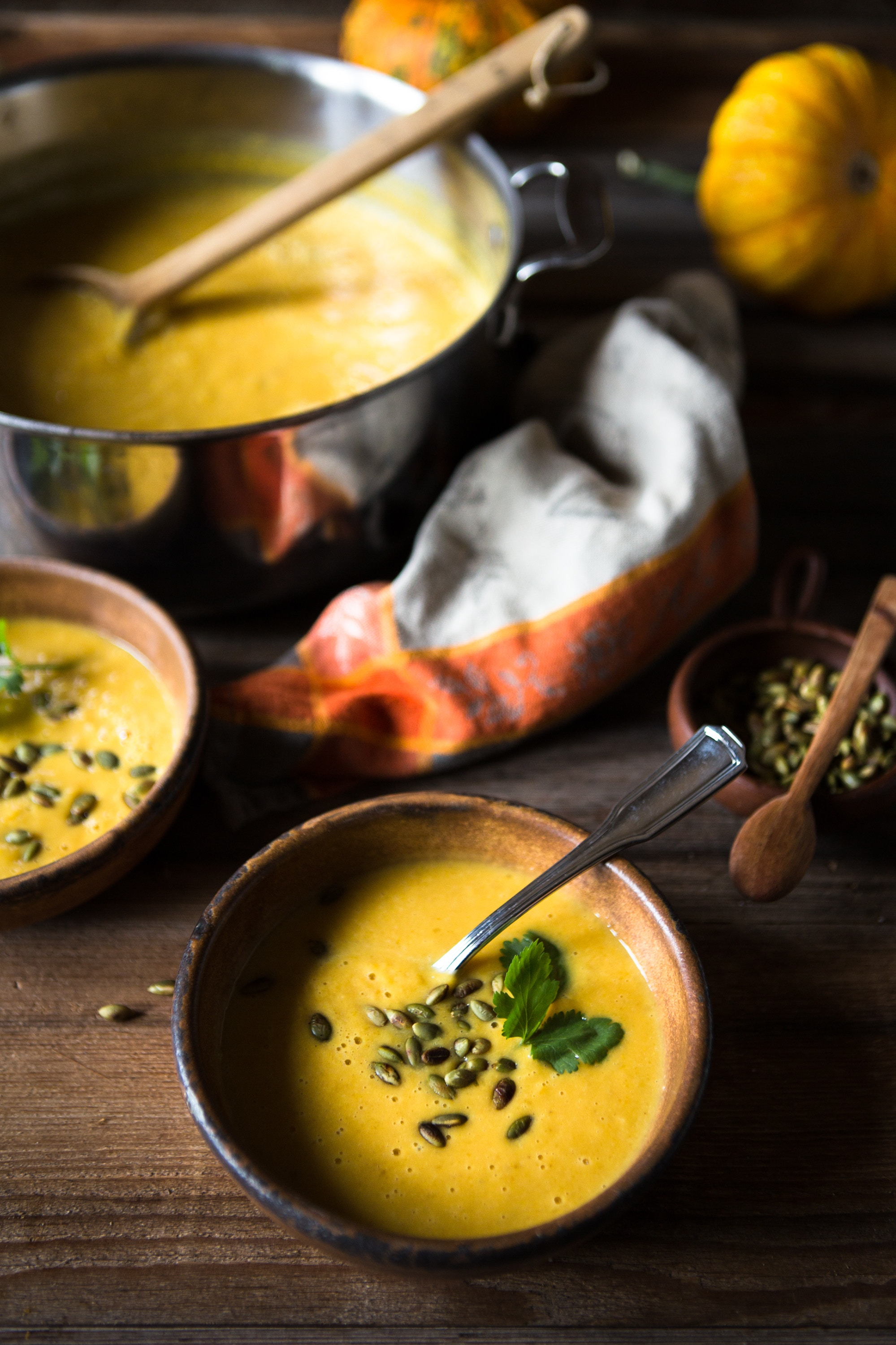 Curried butternut and coconut milk soup recipe