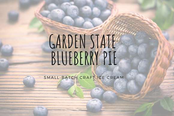 Garden State Blueberry Pie