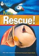 Puffin Rescue.jpg