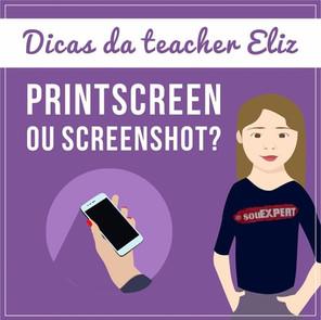 Printscreen ou screenshot?