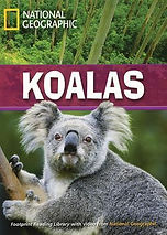 Koalas Footprint.jpg