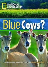 Blue Cows.jpg