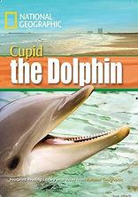 Cupid the dolphin.jpg