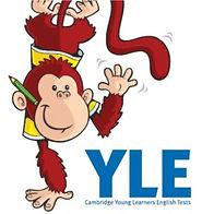 YLE.jpg