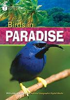Birds in paradise.jpg