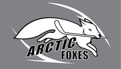 Arctic Foxes Logo