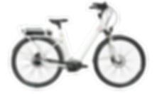 SEV vélo à assistance électrique Ellite boutique Green E-Bike Country