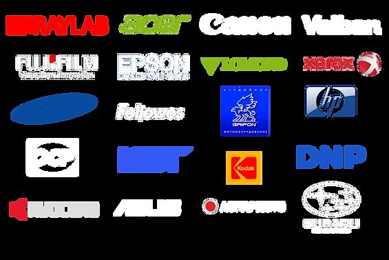 лого все вместе.png
