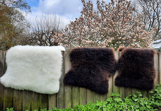 sheepskins 3.jpg