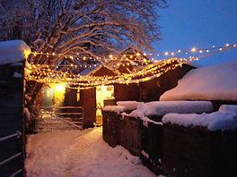 snow yard 3.JPG