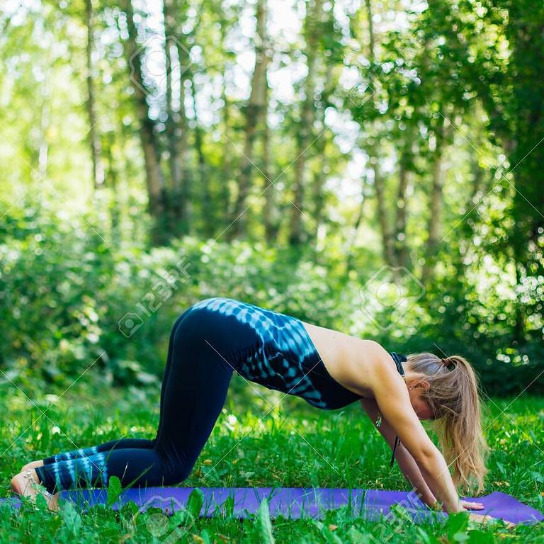 Online summer yoga