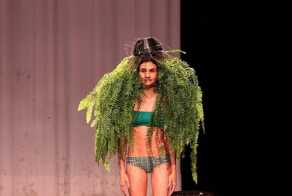 Entretantas Conexões em Dança apresenta Maria Samambaia Palestra